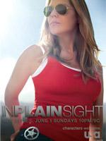 In Plain Sight- Seriesaddict
